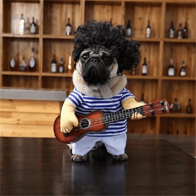 Quần áo chó Pug nguyên set nhạc sĩ